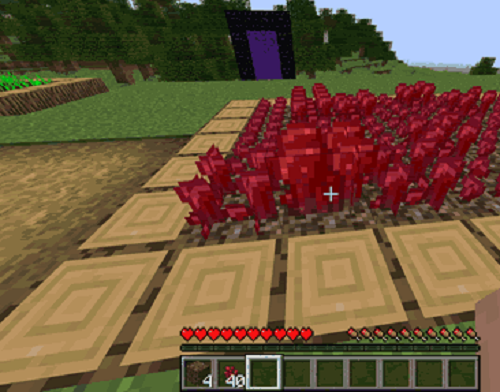 How to grow Nether Wart - How to farm Nether Wart